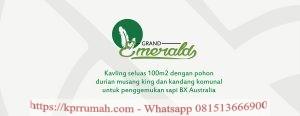 Desa Durian Investasi Tanah Produktif Bagi Masa Depan