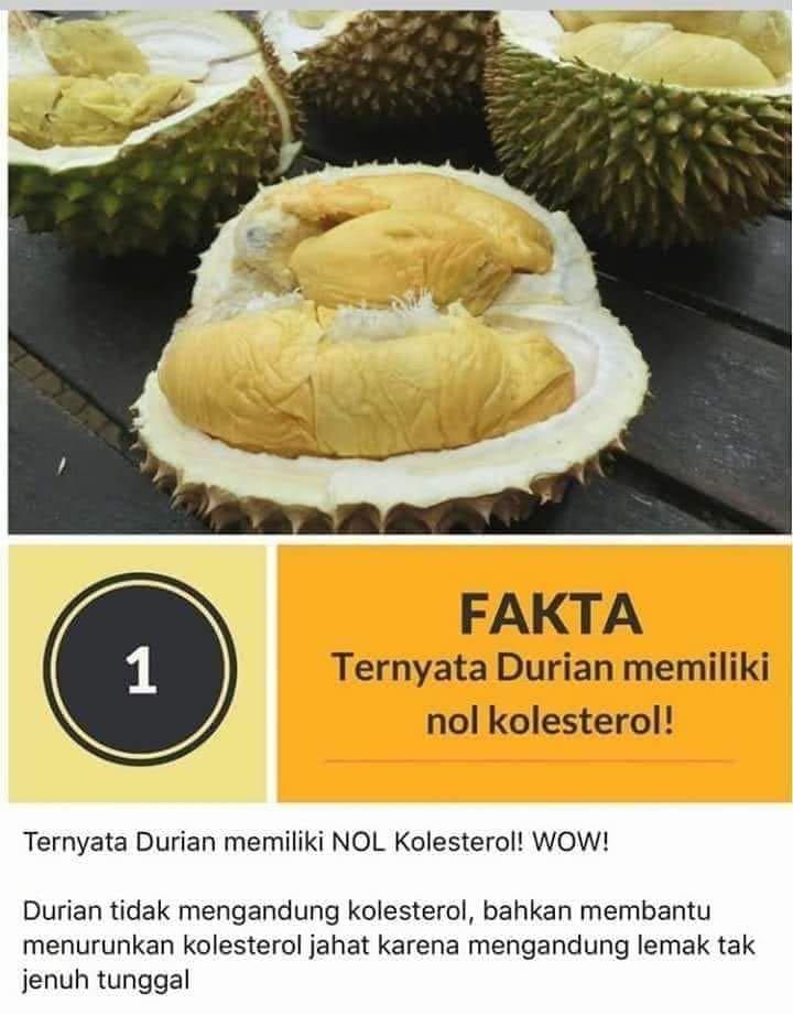 Investasi Tanah Desa Durian